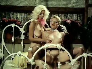 just sex , inter race sex , vintage, old adult films , reality show , ethnic
